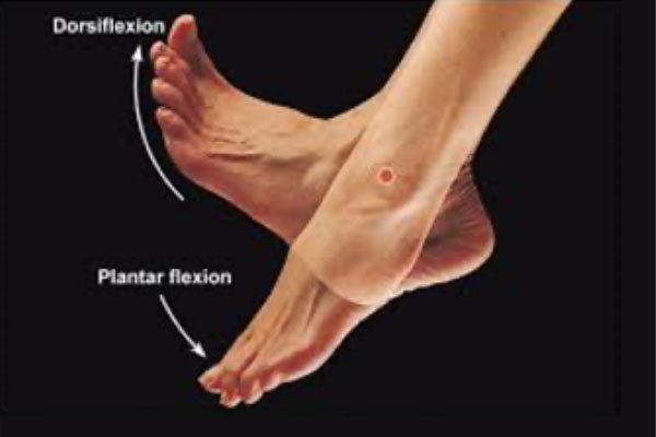 5 best exercises for foot pain